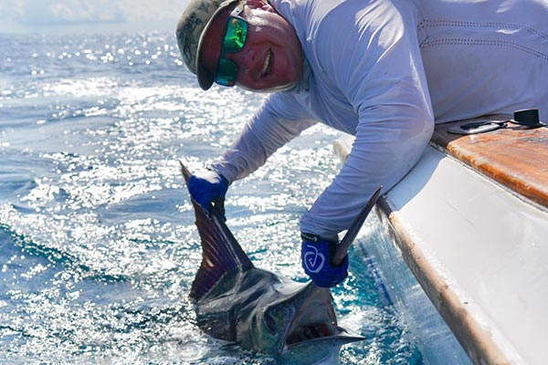 ecuagringo marlin fishing report 20190822 02