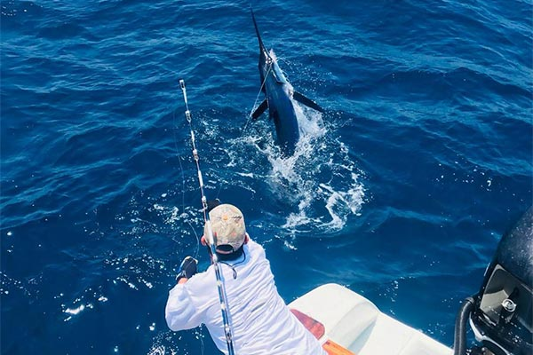 promotion marlin fishing 20190917 02