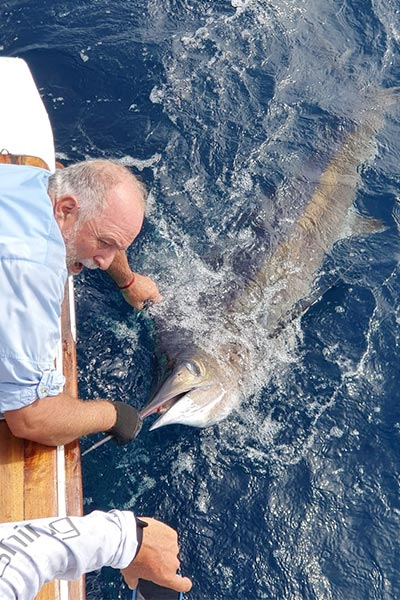 promotion marlin fishing 20200209 02