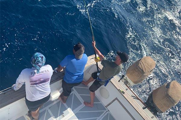 ecuagringo marlin fishing report 20191212 02