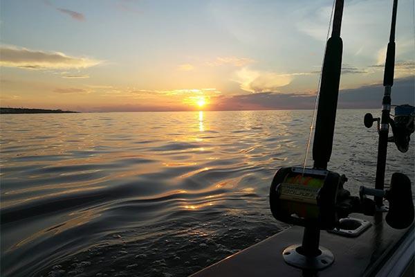 ecuagringo newsletter marlin fishing 201912007 04