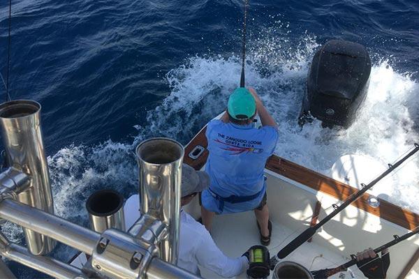 ecuagringo marlin fishing report 20200305 02