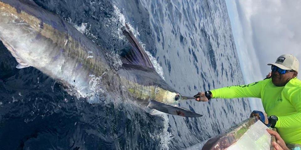 blog fishing galapagos islands 2020090 01