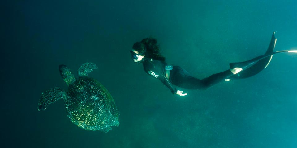 Galapagos Incredible Fishing Special With  Free Snorkeling Day or Diving Tour!