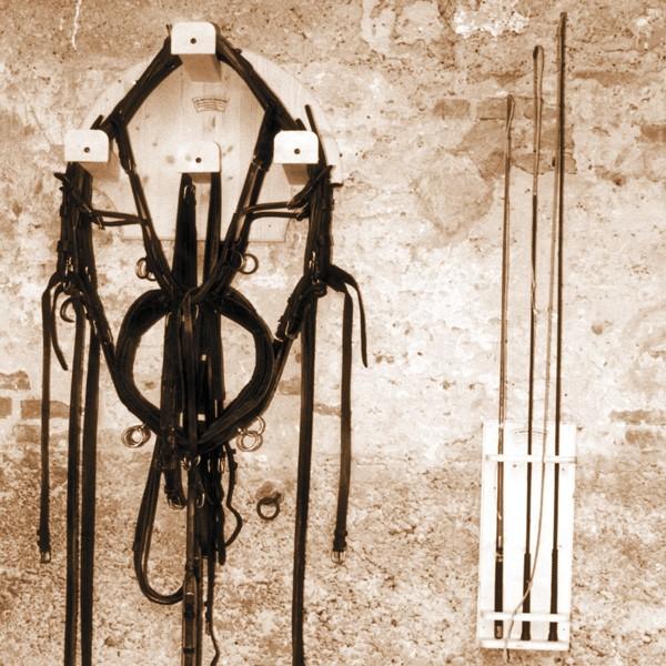 standard harness rack ecurybois
