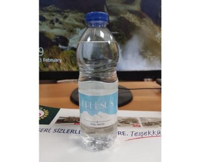 Ephesus Still Water 12X500Ml Pet