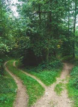 paths choice