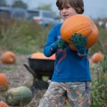 Pumpkin Patch-6