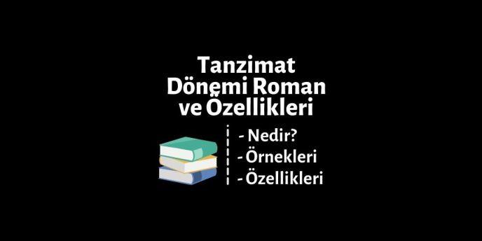Tanzimat dönemi roman