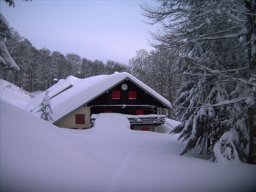 Refuge sous la neige abondante