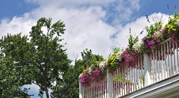 vasi di fiori per balconi
