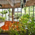 Coltivazione Indoor: da dove iniziare? Cosa Serve?