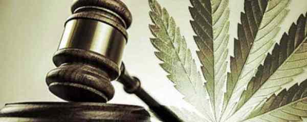 Coltivazione Mariuana e Legge Italiana