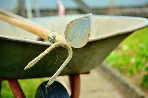 Zappe per Giardinaggio