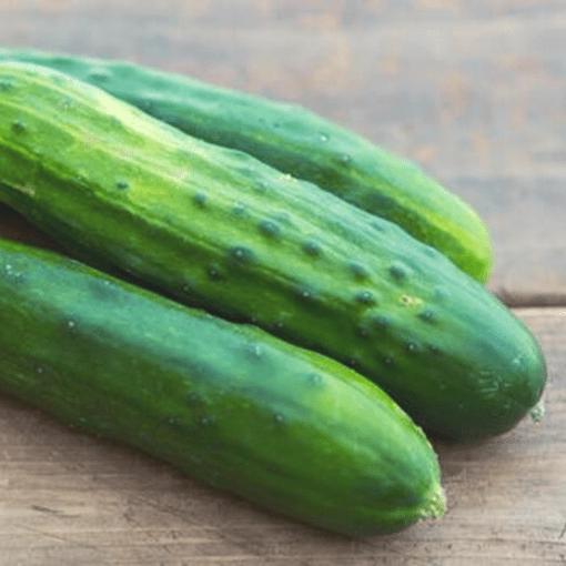 Cucumber (Diva)