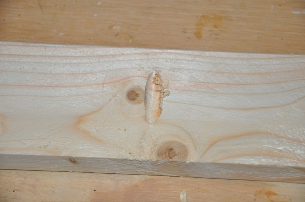 """Make a series of pocket holes on the back side of the cheaper """"shelf"""" wood. Don't cut your pocket holes in your frame wood!"""