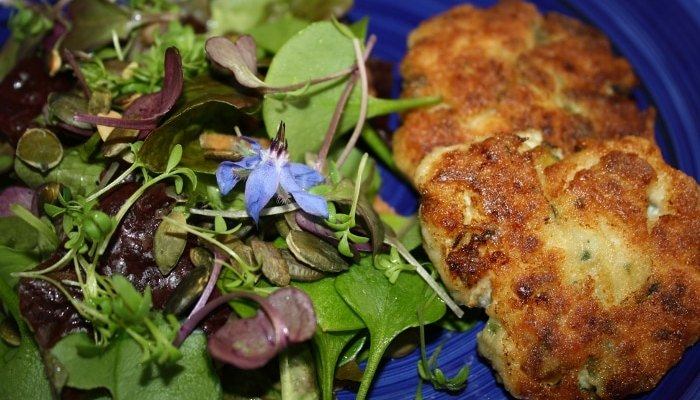 Fish, Apple and Herb Cakes