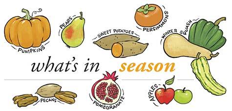 seasonFall14