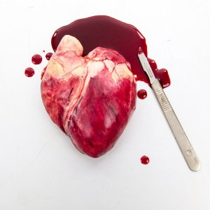 a realistic Chocolate Human Heart in a pool of edible blood with a scalpel