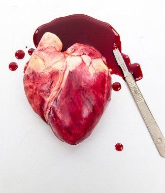 chocolate-human-heart