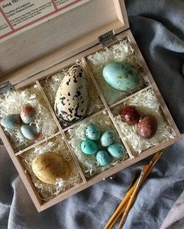 Lifestyle photo of a collection of chocolate British bird's eggs in a wooden box of shredded tissue sitting on linen