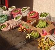 2 toneladas y media de frutas provenientes de Bolivia decomisó el SAG Tarapacá