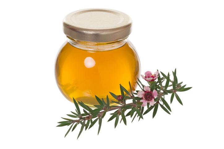 10 Remedios que mejoran tu salud con aceite esencial del árbol de té