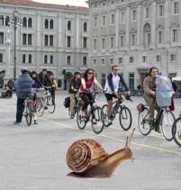 Bonus bicicletta. Varato a maggio non arriverà prima di novembre