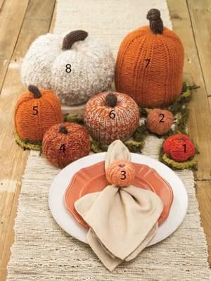 Annie's Loom Knit Pumpkin Patch Knit Pattern
