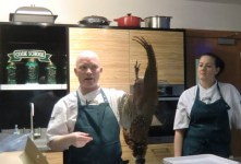 A magnificent pheasant at the Cook School