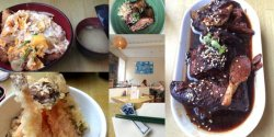 On the left Tonkatsu curry and Mixed Tempura, aubergine and right the pork