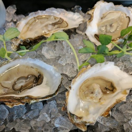 Oysters as fresh and impressive as the sea.
