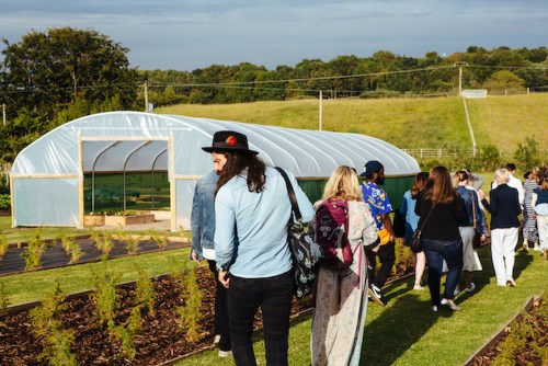 Gin tours at the Secret Herb Garden provide a fascinating insight into how the Secret Garden Gins are made
