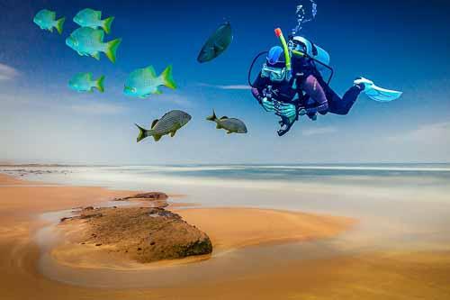 Beach Diving by Ken Gillies