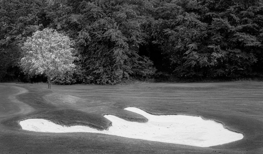 Doug Berndt - Mortonhall GC Trees and Bunkers-1