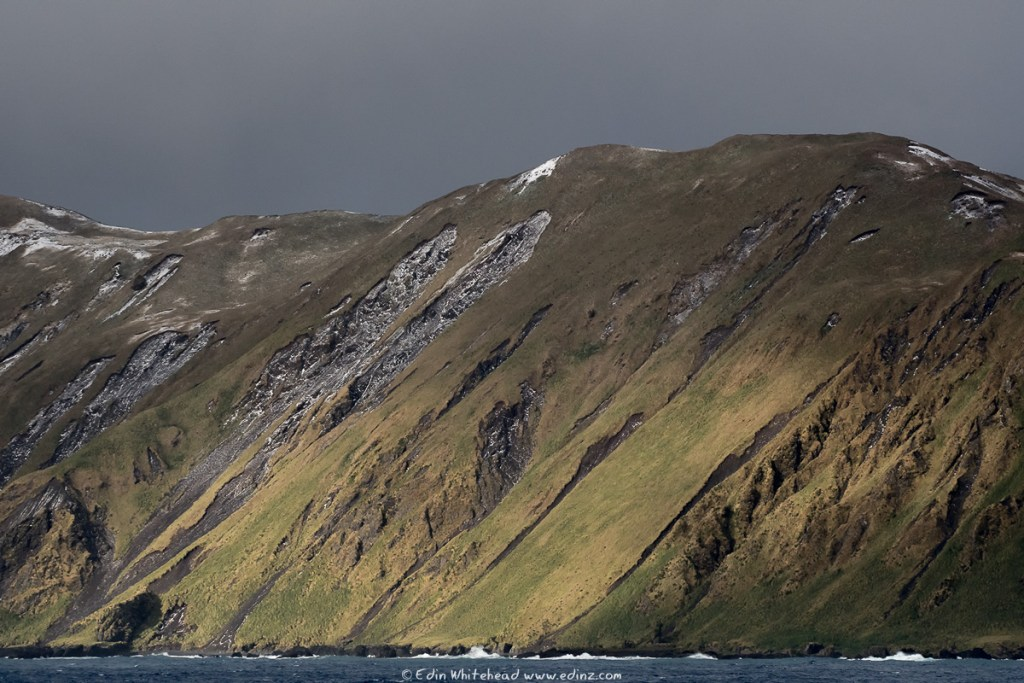 Macquarie_Island_EAW_8530-Edit6x4WEB.jpg