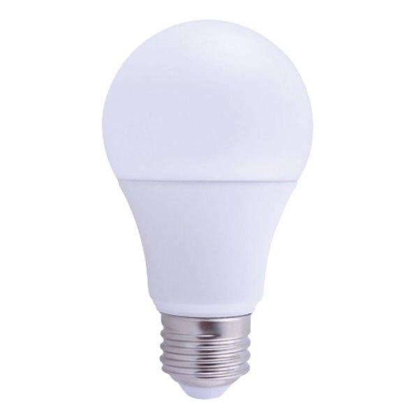 A21 LED Light Bulb