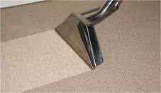 carpet cleaning steamer