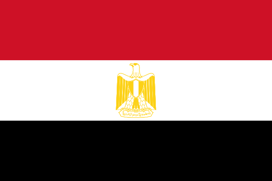 Egypt Market Research - flag of Egypt