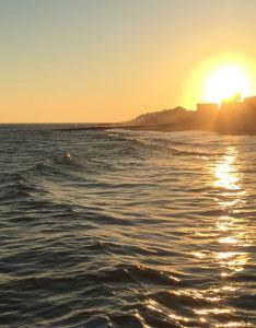 Tide chart edisto beach sc also rebellions rh rebellionsfo