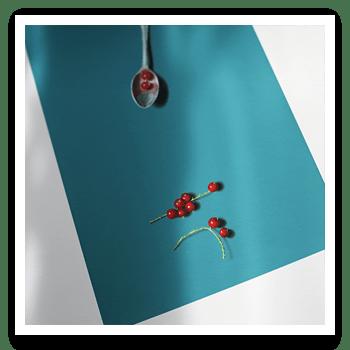 "Detail of ""RedcurrantTeaspoon"" by David Paul Gleeson"