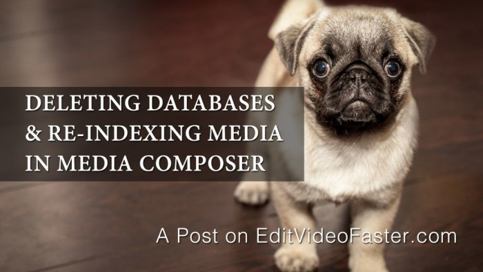Deleting Databases and Re-Indexing in Avid Media Composer