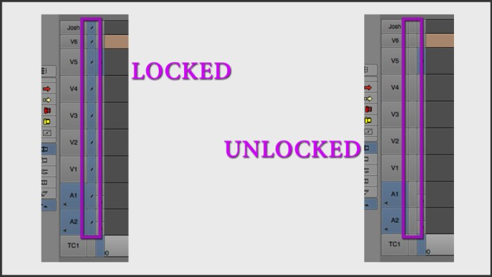 Locked vs. Unlocked Tracks in Avid