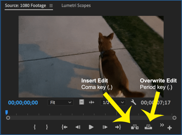 Premiere Pro Source Monitor panel with Insert Edit and Overwrite Edit icons labeled
