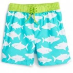 swim trunks shorts (0-24)
