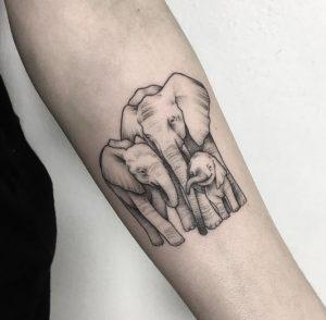 tatouaz gia tin oikogenia, elefantes
