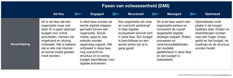 digitale volwassenheid fases