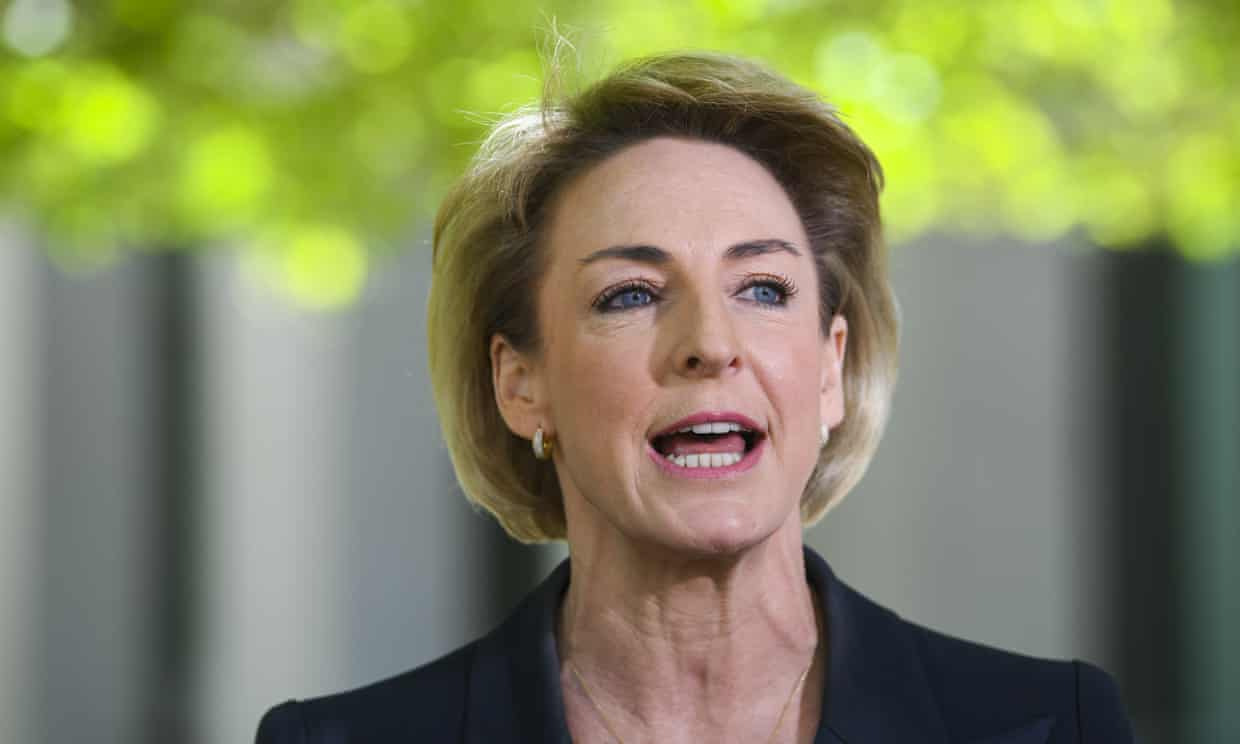 Michaelia Cash has defended the appointment of Adam Boyton to the $500,000-a-year job of interim national skills commissioner. Photograph: Lukas Coch/AAP