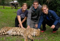 Erin, Me & Laura Petting a Cheetah!
