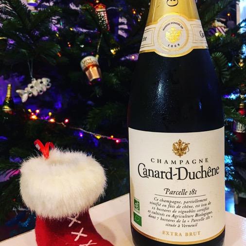 champagne canard duchène parcelle 181